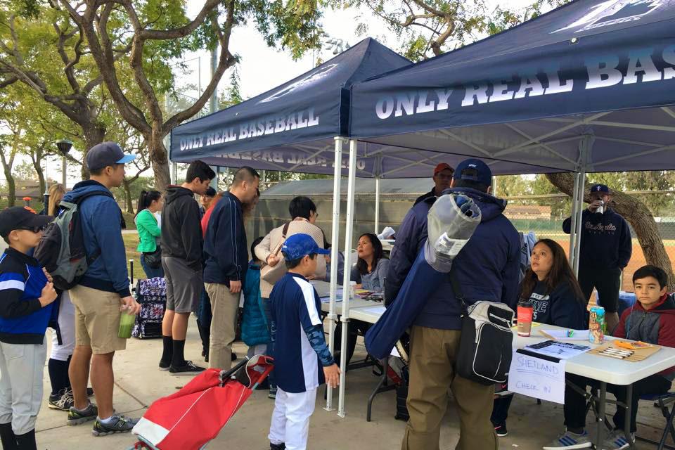 BuyShade baseball tent